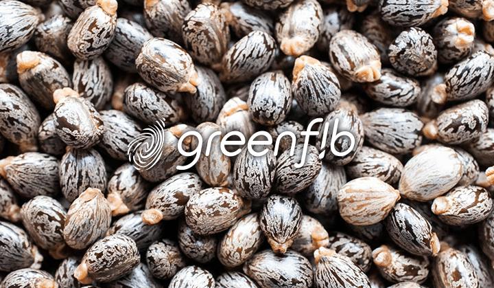 greenfib_720x419 (2)